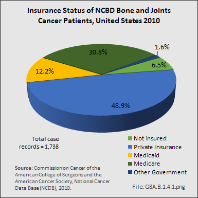 Insurance Status of NCBD Bone and Joints Cancer Patients, United States 2010