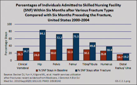 Percentages of Individuals Admitted to Skilled Nursing Facility (SNF) with Six Months after Various Fracture Types Compared with Six Months Preceding the Fracture,  United States 2000-2004